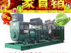 无刷全铜系列 300KW玉柴 柴油发电机组 柴油发电机 发电机组