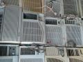 二手窗机空调,一体机空调,通电就能制冷,可出售可出租,销售每台仅