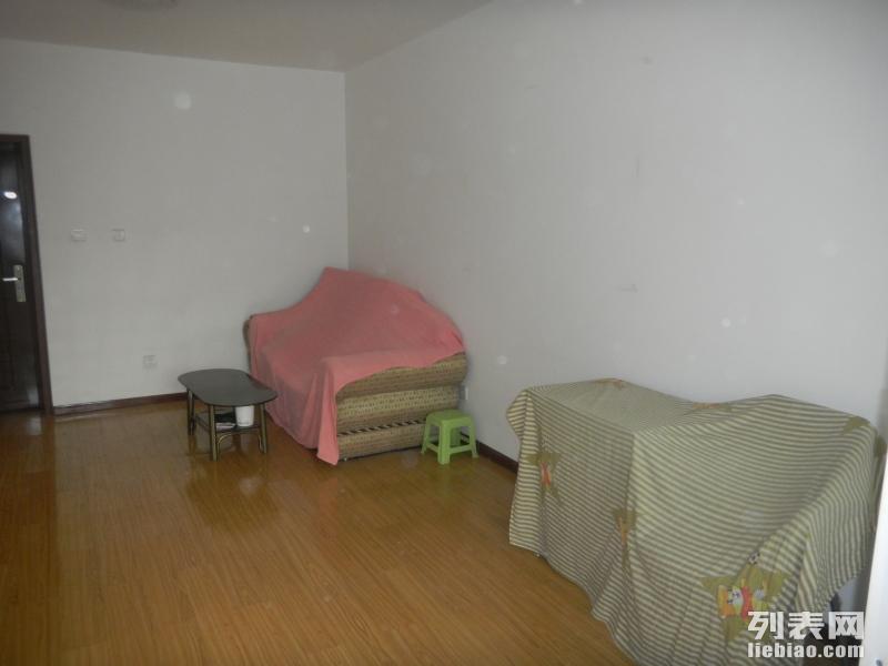 金花路 金花路十字东北角中菲钻石 1室 1厅 50平米 整租