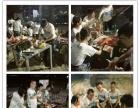 惠州大亚湾农家乐自助休闲旅游