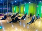 成都舞蹈培训 钢管舞爵士舞零基础培训 包就业