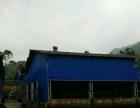 钢结构养殖加工场