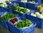 合肥送菜公司蔬菜配送食材配送食品配送食堂配送