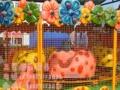 全网热销大型游乐设备庙会新型小型游乐设备喷球车
