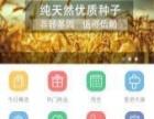 黄山网站建设,APP开发,移动电商,微信开发公司