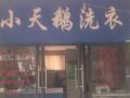 鑫苑都市领地小天鹅洗衣连锁