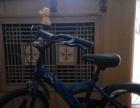 捷安特儿童自行车