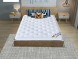 逸宿床垫榻榻米床垫子双人褥子记忆棉海绵舒适床垫