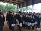 苏州学骑马较专业的英式马术课程免费体验专业马场