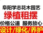 阜阳学志花木公司绿植租摆植物盆景销售租赁绿化工程养护园林设计
