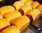 笨小鸭台湾手撕面包怎么加盟?加盟电话是多少