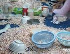 有无经验都可加工代理的项目,饰品散件在家半成品加工