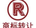 全国 商标注册 优质商标转让 TM标 R标