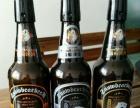 雪熊啤酒100%进口麦芽发酵酒加盟 名酒