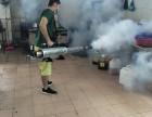 东莞各镇区白蚁防治 杀虫灭鼠 经验丰富