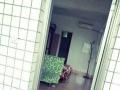 陈桥 金沙海岸有房出租 金龙华花园 1室1卫 男女不限