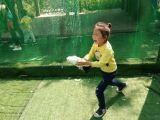 安徽动物展览出租萌宠租赁