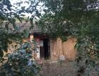 武汉蔡甸地区有房 宅基地出售