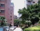 软件园附近 BRT沿线 莲前东路 前埔 电梯高层 家电齐全