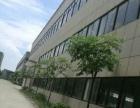 新仓 厂房 出租13000平米
