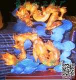 想买口碑好的花灯就来辽宁民俗学会花灯文化公会-福建花灯