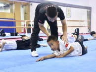 南山区跆拳道培训先试学,满意后再报名