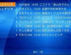 newhome日本关东关西电视机顶盒,日本网络卫星电视安装