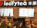 leafytea丰茶总部在哪 丰茶加盟费多少钱