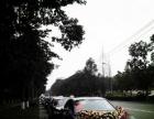 宾利飞驰+奔驰S系婚车队,4-5-6月承接各类婚车