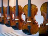 宇韵专业从事成都弦乐器制作公司、成都古典音乐乐器公司玩具批发