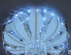 艾菲诺莎加盟 灯具灯饰