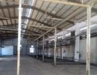刁朗独院钢构2000平方 有宿舍有办公室 滴水8米