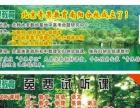 北京青果教育专注中学生数理化培优
