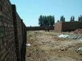 东河区莎尔沁,海贷村 土地 1300平米,出租,出售