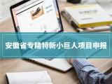 2020年安徽省專精特新小巨人企業培育需要具備的條件