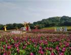 东莞市黛宝咏服装有限公司团建拓展活动在松湖生态园