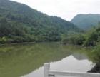 松滋洈水薛家洞生态农旅发展项目寻求合作