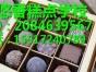 山东DIY手工巧克力技术培训 在山东学习手工巧克力主要内容是