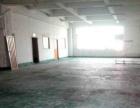 大富工业区 新出700平米标准厂房招租,可做仓库