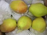 收购批发梨子