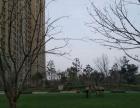 个人) 有暖气紧邻儿童医院世纪康城电梯精装 新华城南郡玻纤