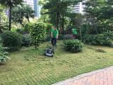 園林綠化養護的必要性