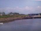 整体出租哈尔滨平房区厂房和鱼塘