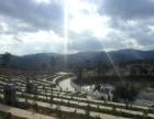 玉溪天泉林园公墓