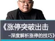 赵泓霖 涨停突破出击-深度解析涨停的技巧 U盘