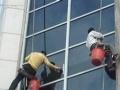 金蓉专业保洁 钟点工 家庭保洁 单位保洁 开荒保洁