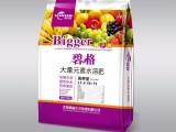 膨果就用高钾肥 碧格大量元素水溶肥