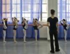 万项拉丁舞培训班 资深舞蹈老师专业教学