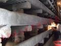 河南新星土元养殖示范基地加盟 种植养殖