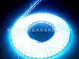 工程用最便宜LED灯带 DC12V3528/120灯单色LED软